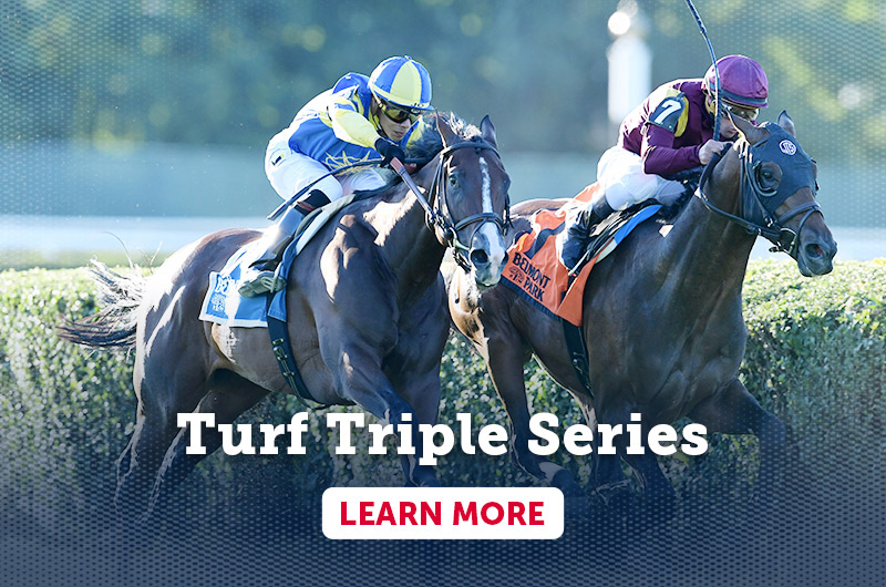 Turf Triple Series